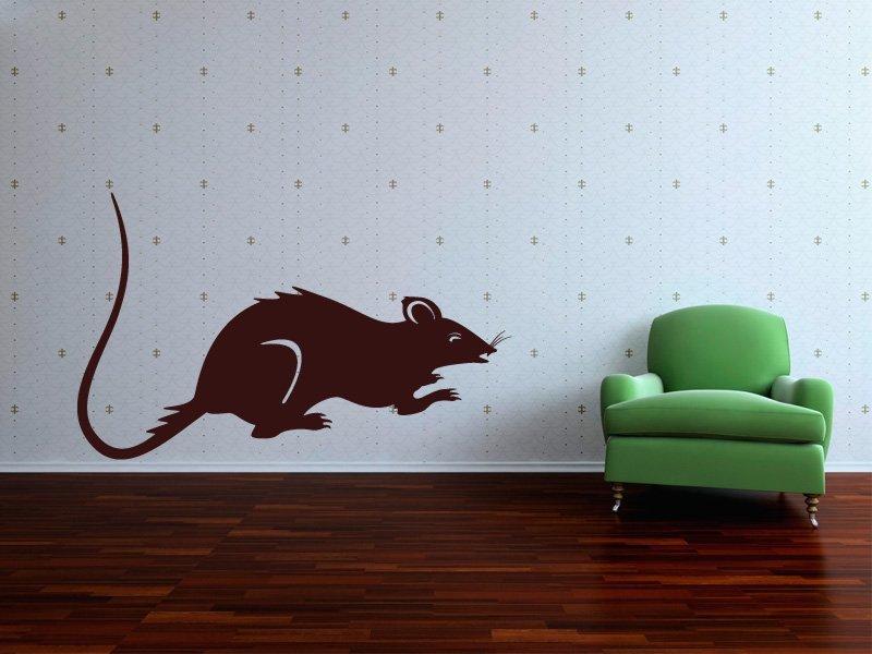 Samolepky na zeď Krysa 001 - Samolepící dekorace a nálepka na stěnu