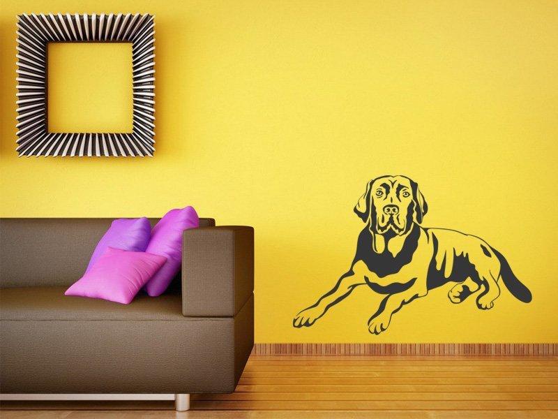 Samolepky na zeď Labrador 004 - Samolepící dekorace a nálepka na stěnu