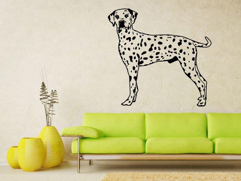 Samolepky na zeď Dalmatin 002 - Samolepící dekorace a nálepka na stěnu