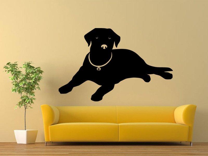 Samolepky na zeď Labrador 001 - Samolepící dekorace a nálepka na stěnu