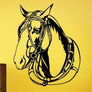 Samolepící dekorace Kůň 0324 - 100x125 cm