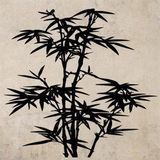 Samolepka na zeď Bambus 010 - 83x80 cm