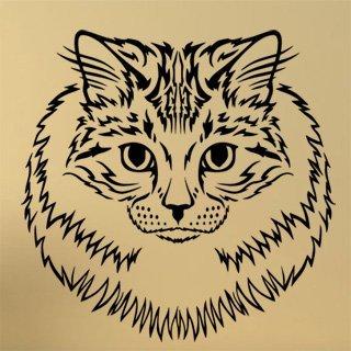 Samolepka Kočka 0472 - 100x100 cm