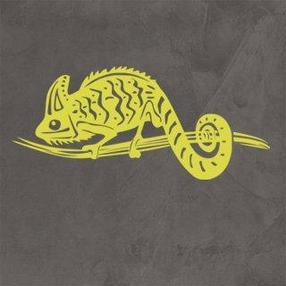 Samolepka Chameleon 002 - 182x80 cm