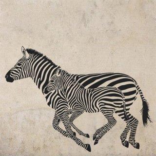 Samolepící dekorace Zebra 001 - 168x120 cm
