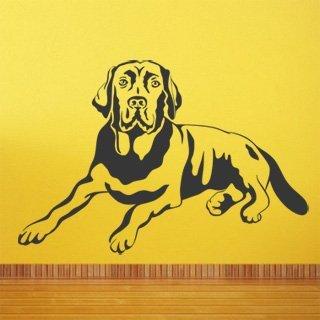 Samolepící dekorace Labrador 004 - 150x100 cm