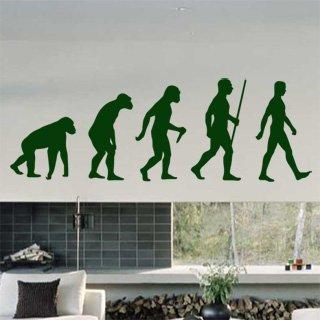 Samolepka na zeď Evoluce 001 - 120x41 cm