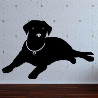 Samolepka na zeď Labrador 001 - 94x60 cm