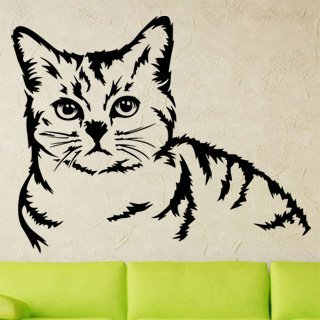 Nálepka na zeď Kočka 0483 - 152x120 cm