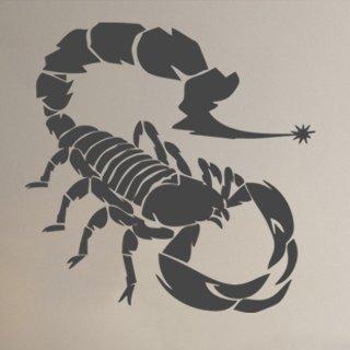 Samolepka na zeď Škorpión 001 - 60x60 cm