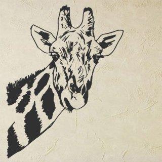 Nálepka na zeď Žirafa 005 - 100x130 cm