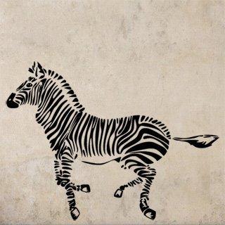 Samolepka Zebra 012 - 120x89 cm