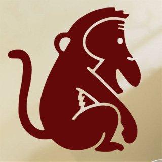 Samolepka na zeď Opička 005 - 60x65 cm