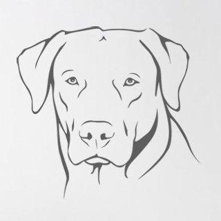 Nálepka na zeď Labrador 002 - 120x113 cm