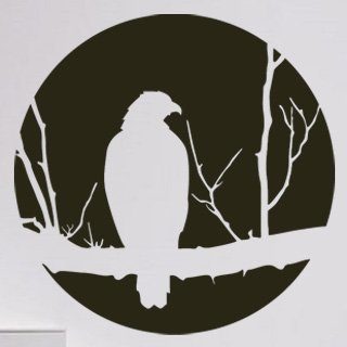 Samolepka na zeď Pták 002 - 60x60 cm
