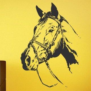 Samolepka na zeď Kůň 023 - 85x120 cm