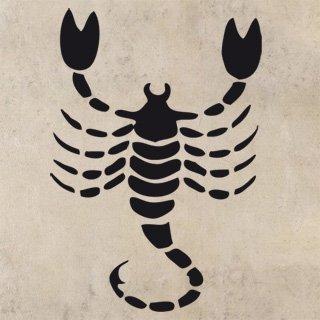 Samolepící dekorace Škorpión 003 - 100x145 cm