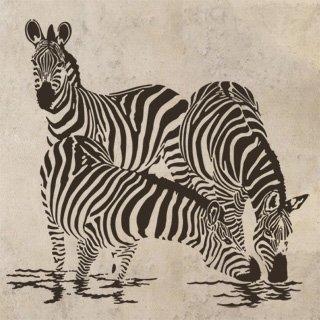 Samolepka na zeď Zebra 003 - 120x115 cm