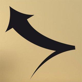 Samolepka Šipka 004 - 80x84 cm