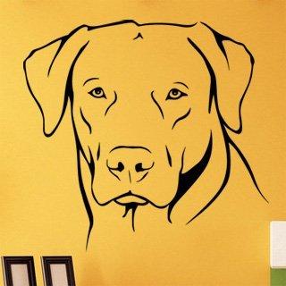 Samolepka Labrador 002 - 85x80 cm