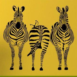 Samolepka na zeď Zebra 015 - 110x100 cm