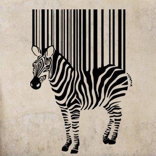 Samolepka Zebra 016 - 80x114 cm