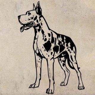 Nálepka na zeď Doga 003 - 100x140 cm
