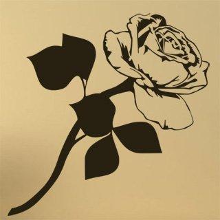 Samolepka na zeď Růže 009 - 60x61 cm