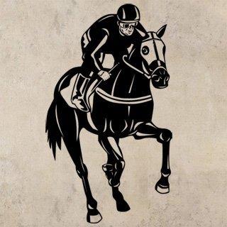 Samolepka Kůň 0373 - 69x120 cm