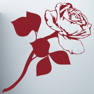 Nálepka na zeď Růže 009 - 120x121 cm