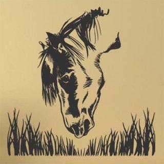 Samolepící dekorace Kůň 021 - 120x120 cm