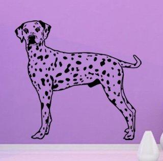 Samolepící dekorace Dalmatin 002 - 107x100 cm