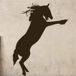 Samolepka na zeď Kůň 008 - 60x81 cm