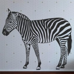 Samolepky na zeď Zebra 013
