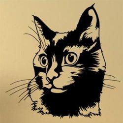 Samolepky na zeď Kočka 0489