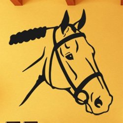 Samolepky na zeď Kůň 0316