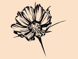 Samolepky na zeď Květiny 030