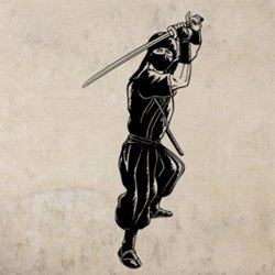 Samolepky na zeď Ninja 001