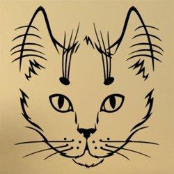 Samolepky na zeď Kočka 0463