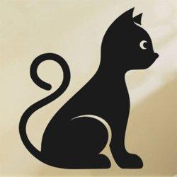 Samolepky na zeď Kočka 0491