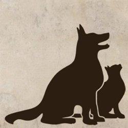 Samolepky na zeď Kočka a pes 0560