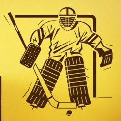 Samolepky na zeď Hokejista 004