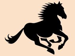 Samolepky na zeď Kůň 0391