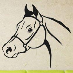 Samolepky na zeď Kůň 0356