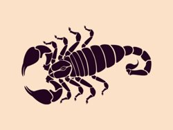 Samolepky na zeď Škorpión 004