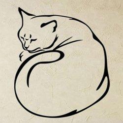 Samolepky na zeď Kočka 0494