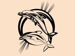 Samolepky na zeď Pár delfínů 001