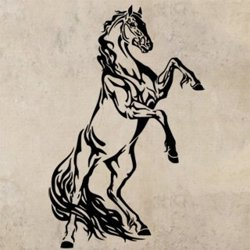 Samolepky na zeď Kůň 0321