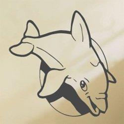 Samolepky na zeď Delfín 001