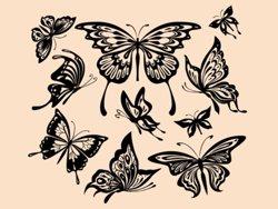 Samolepky na zeď Sada motýlů 001